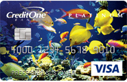 Apply Online for Credit One Bank® Unsecured Platinum Visa®